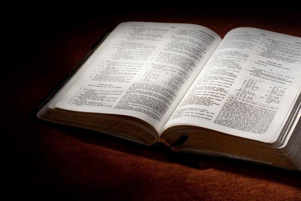 В Московской Патриархии назвали незаконным решение судьи во Владивостоке об уничтожении Библии