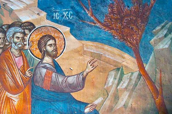 Понедельник Страстной седмицы: о ветхозаветном Иосифе, Сыне Иакова, и о засохшей смоковнице