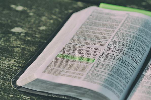 Суд решил не уничтожать конфискованные во Владивостоке Библии